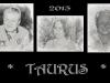 Taurus 2013