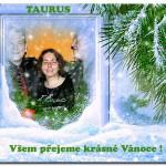 Taurus Vanoce 2013